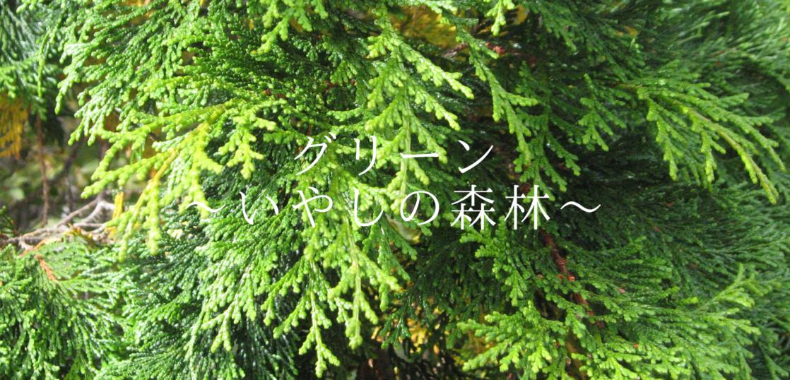 グリーン(いやしの森林)ヒノキ