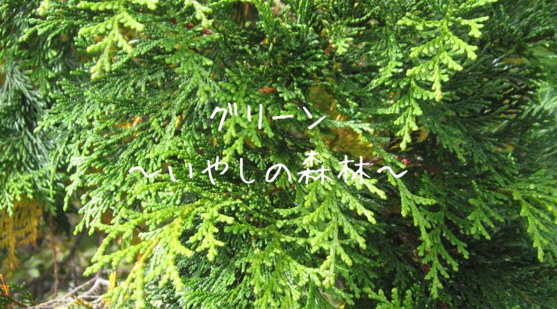 グリーン(いやしの森林)数秘4