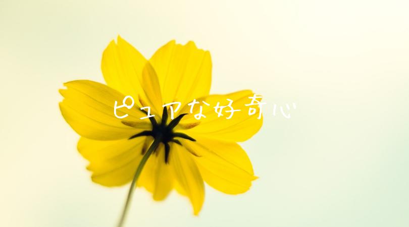 ピュアな好奇心(イエロー)