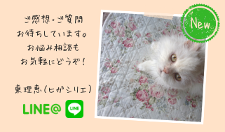 Line@(東理恵)