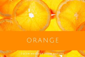 オレンジ 数秘8