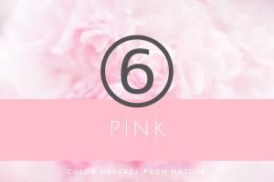 数秘6 ピンク