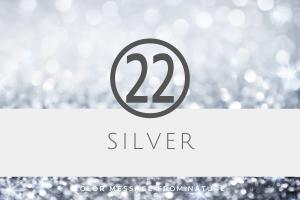 数秘22 シルバー