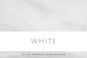 ホワイト(はじまり)
