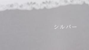 数秘カラー(シルバー)
