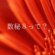 数秘8(オレンジ)