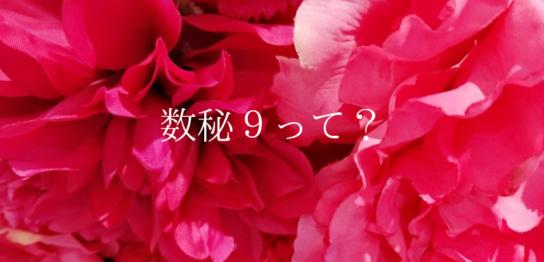 数秘9(マゼンタ)
