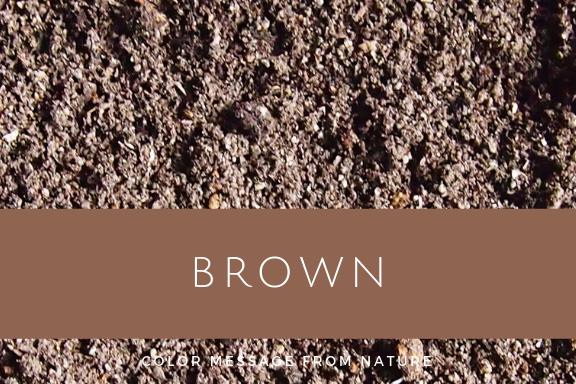 ブラウン(茶)