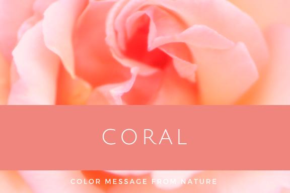コーラル(珊瑚色)
