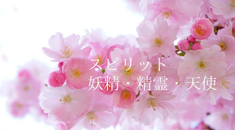 ピンク(妖精、精霊、天使)数秘6 愛