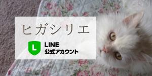 ヒガシリエ 公式LINE