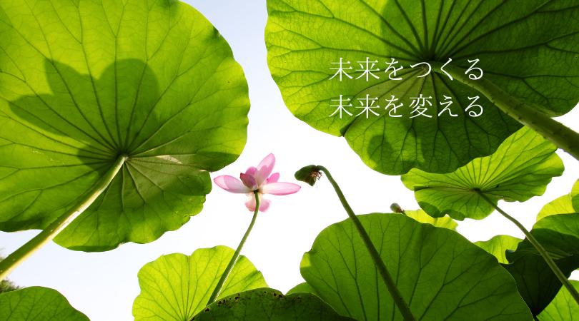 画像に alt 属性が指定されていません。ファイル名: Lotus-sky.png