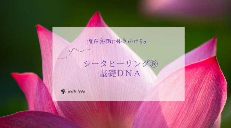 シータヒーリング 基礎DNA