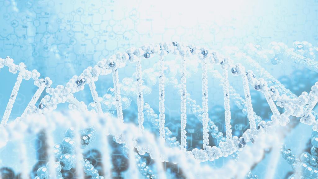 シータヒーリング DNA